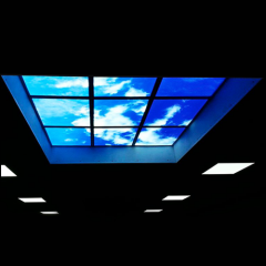 595 * 595mm 100lm/W 32W blue Sky LED panel light